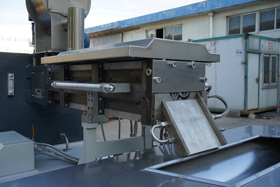 Parallel High Capacity Food Processing Twin Screw Extruder